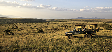Image of Elewana Lewa Safari Camp