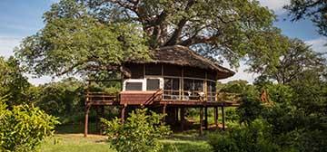 Image of Elewana Tarangire Treetops