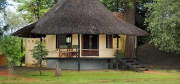 Image of Nsefu