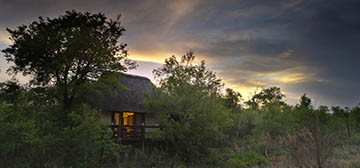 Image of Sabi Sabi Little Bush Camp