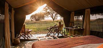 Image of Serengeti Safari Camp